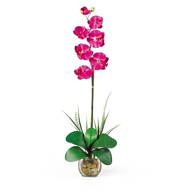 Nearly Natural 1104 Single Phalaenopsis Floral Arrangements