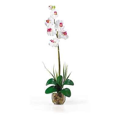Nearly Natural 1104-WH Single Phalaenopsis Floral Arrangements, White