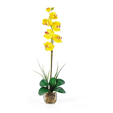Nearly Natural 1104-YL Single Phalaenopsis Floral Arrangements, Yellow