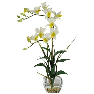 Nearly Natural 1135-CR Dendrobium Floral Arrangements, Cream