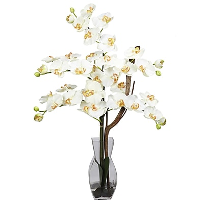 Nearly Natural 1191-CR Phalaenopsis Arrangements, Cream