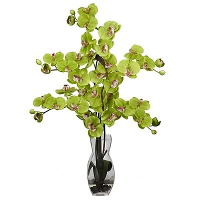 Nearly Natural 1191-GR Phalaenopsis Arrangements, Green