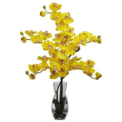 Nearly Natural 1191-YL Phalaenopsis Arrangements, Yellow