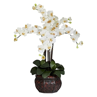 Nearly Natural 1211-CR Phalaenopsis with Vase Floral Arrangements, Cream