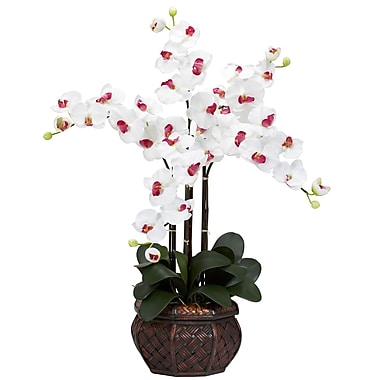 Nearly Natural 1211-WH Phalaenopsis with Vase Floral Arrangements, White
