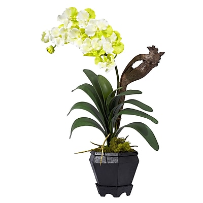 Nearly Natural 1252-WH Vanda Floral Arrangements, White