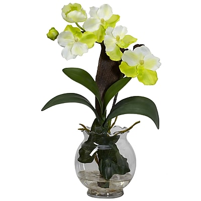 Nearly Natural 1276-WH Mini Vanda Floral Arrangements, White