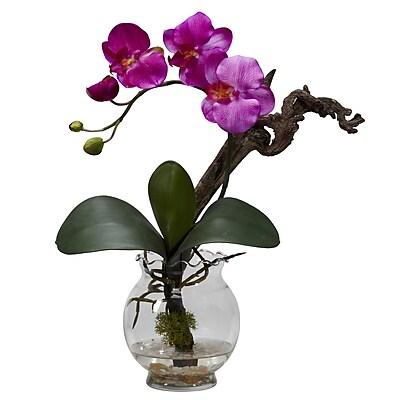 Nearly Natural 1277-PP Mini Phalaenopsis Floral Arrangements, Purple
