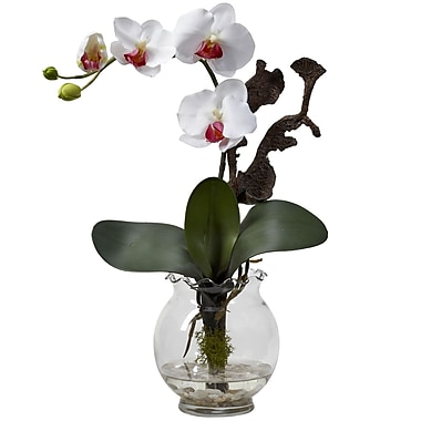 Nearly Natural 1277-WH Mini Phalaenopsis, White