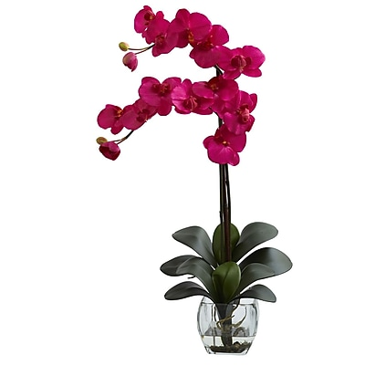 Nearly Natural 1323-BU Double Phal Arrangements, Beauty pink