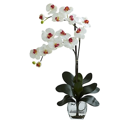 Nearly Natural 1323-WH Double Phal Arrangements, White