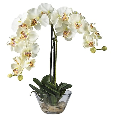Nearly Natural 4643-WH Phalaenopsis with Vase Floral Arrangements, White