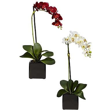 Nearly Natural 4757 Phaleanopsis Orchid Set of 2, Assorted