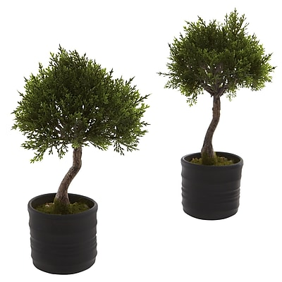 Nearly Natural 4965 Cedar Bonsai Set of 2 Plant in Pot