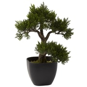 "Nearly Natural 4966 15"" Cedar Bonsai Plant in Pot"