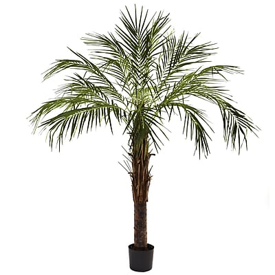 Nearly Natural 5366 6' Robellini Palm Tree in Pot