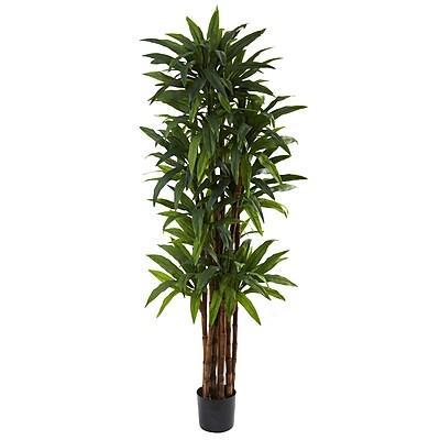Nearly Natural 5403 Dracaena Tree in Pot