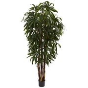 Nearly Natural 5404 6' Raphis Palm Tree in Pot