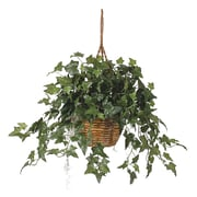 Nearly Natural 6507 English Ivy Hanging Plant in Basket