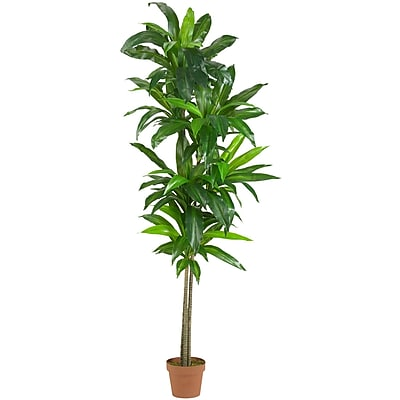 Nearly Natural 6596 Dracaena Silk Plant in Pot