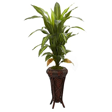 Nearly Natural 6671 Dracaena Floor Plant in Decorative Vase