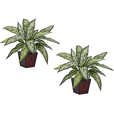 Nearly Natural 6694 Silver Queen Set of 2 Plant in Pot