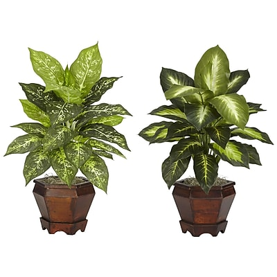 Nearly Natural 6712-AS-S2 Dieffenbachia Set of 2 Plant in Pot, Assorted