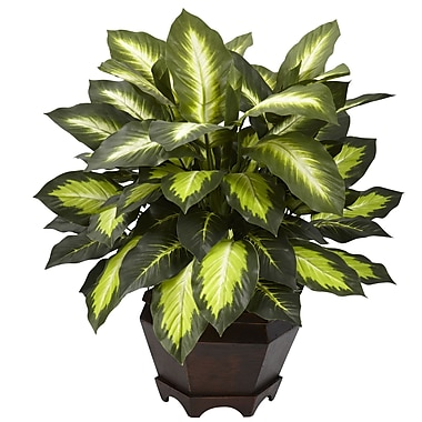 Nearly Natural 6720 Triple Dieffenbachia Desk Top Plant in Decorative Vase