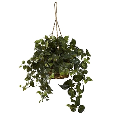 Nearly Natural 6736 Philo Hanging Plant in Basket