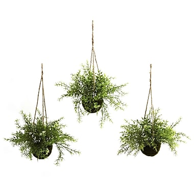 Nearly Natural 6742 Ruscus and Sedum Set of 3 Hanging Plant in Basket