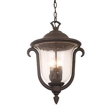 Kalco Santa Barbara 3-Light Outdoor Hanging Lantern; Burnished Bronze