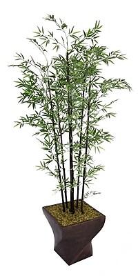 "Laura Ashley 82"" Bamboo Tree in 17"" Fiberstone Planter"