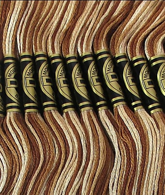 DMC Six Strand Embroidery Cotton, Variegated Brown
