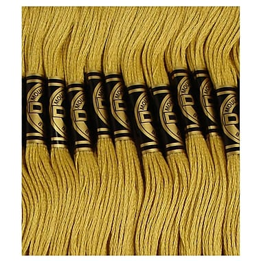 DMC Six Strand Embroidery Cotton, Very Light Golden Olive