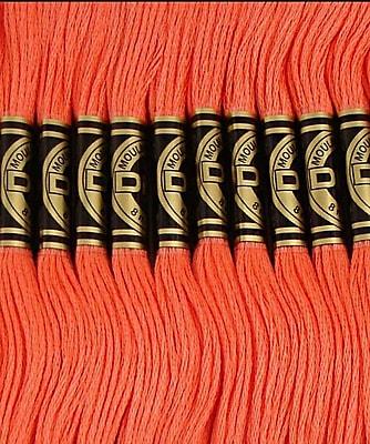 DMC Six Strand Embroidery Cotton, Dark Melon