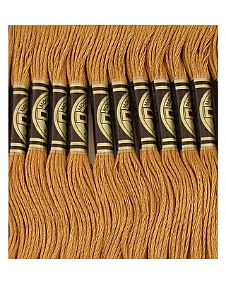 DMC Six Strand Embroidery Cotton, Dark Hazelnut Brown