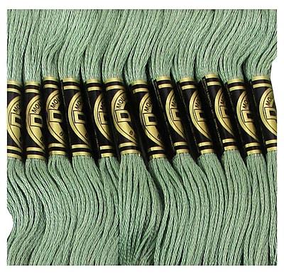 DMC Six Strand Embroidery Cotton, Fern Green