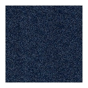 Andersen Brush Hog Nylon Entrance Mat, 6' x 8', Navy Brush with Cleated Backing