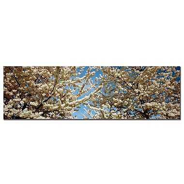 Trademark Fine Art Floral Escape by Preston-1648 Ready to Hang Art 16x48 Inches