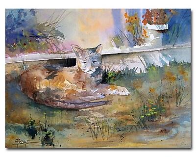 Trademark Fine Art Ryan Radke 'Cat Nap' Canvas Art 18x24 Inches
