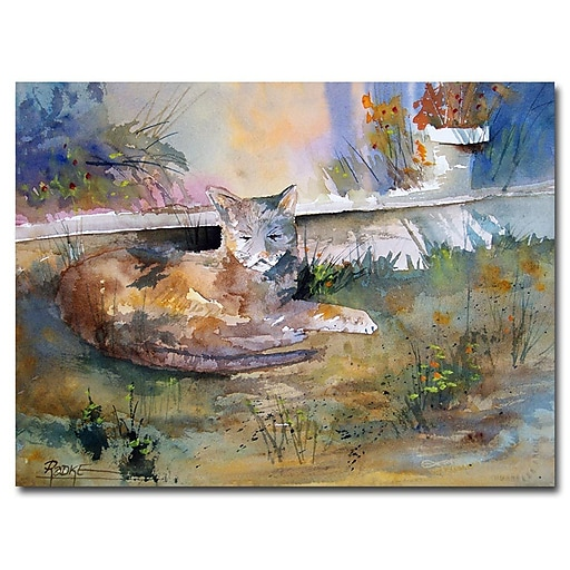 Trademark Fine Art Ryan Radke 'Cat Nap' Canvas Art 18x24 Inches
