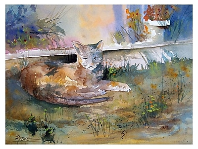 Trademark Fine Art Ryan Radke 'Cat Nap'' Canvas Art 24x32 Inches