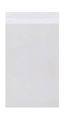 JAM Paper® Cello Sleeves with Self Adhesive Closure, 9.25 x 12.25, Clear, 1000/carton (9.2512.25CELLOB)