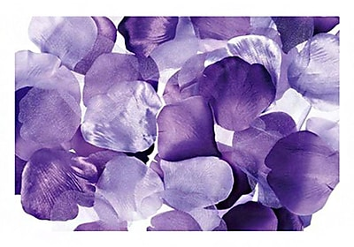 Darice RC-7210-51 Victoria Lynn Satin Rose Petals, Purple, 300/Pack