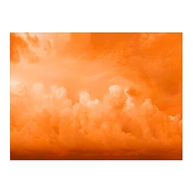 Trademark Fine Art 'Orange Clouds II' 14