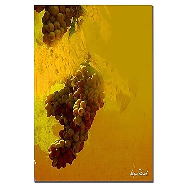 Trademark Fine Art 'Grape III' 26
