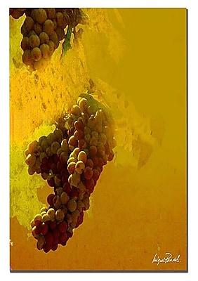 Trademark Fine Art 'Grape III' 26