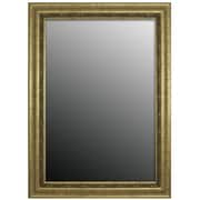 Second Look Mirrors Andelusian Rose Silver Classic Wall Mirror; 46.5''H x 36.5''W x 1''D