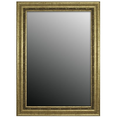 Second Look Mirrors Andelusian Rose Silver Classic Wall Mirror; 35''H x 17''W x 1''D