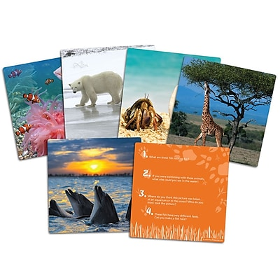 Learning Resources® Wild About Animals Snapshots Critical Thinking Photo Card Set, Grade PreK+
